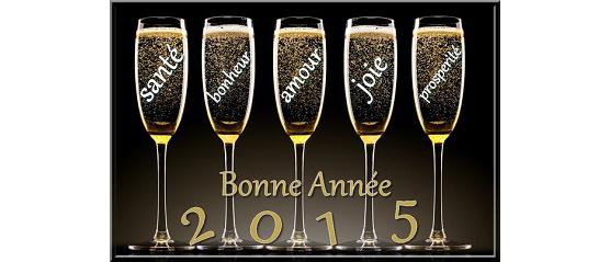 Bonne Annee 2015 Web